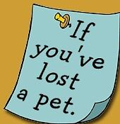 If You Lost Your Pet