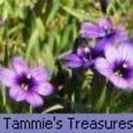 Tammie's Treasures 3