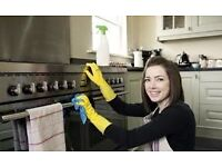 DOMESTIC CLEANING, OFFICE CLEANING, GREAT DEALS & DISCOUNTS !