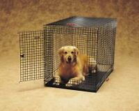 Kennel-Aire Professional Fold-and-Carry Wire Dog Crate Size: Lar