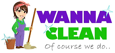 CLEANING and PARTYCLEANING SPECIALISTS