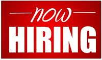 Looking for a 2nd Year Plumber to join our team!