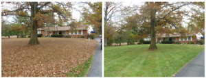 Niagara's Cheapest Fall Yard cleanup / Leaf Removal and MORE