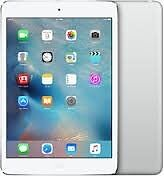 iPad Mini - Brand New, never used