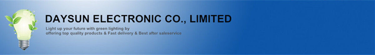 DaySun Electronic Company Limited