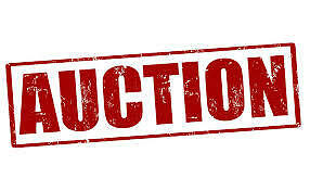 HARDWARE AND RENTAL STORE LIQUIDATION AUCTION