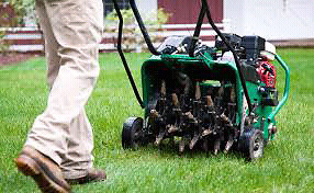 Spring Core Lawn Aeration