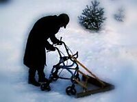 Free snow removal for seniors!