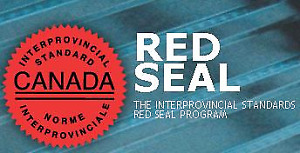 (RED SEAL) ELECTRICIAN EXAM STUDY MATERIAL 442A & 309A