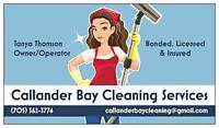 Professional cleaner for hire