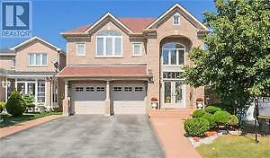 Newly constructed basement for rent in Brampton- Airport/Bovaird