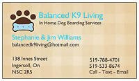 Dog Boarding Services - Balanced K9 Living - Ingersoll