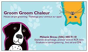 Toilettage pour animaux a domicile / Housecall pet grooming