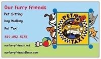Our Furry Friends Pet Taxi for you and your Furry Friend