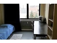 CHEAP SINGLE ROOM IN ZONE 2--£90---CALL NOW , MOVE TOMORROW !!!
