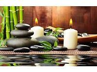 Professional swedish body massage therapy