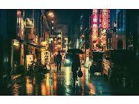 Tokyo Reflection are seeking a bass player.