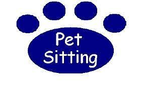 Pet/house sitter available