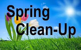 Need Some Help With Spring Clean up ?
