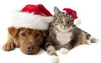 Professional Pet Grooming! BOOK NOW FOR THE HOLIDAYS!