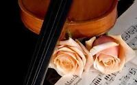 Wedding Music. Live elegant music for your ideal event.
