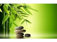 Detox thai massage Sheffield, Oil relaxing Chinese massage service deep tissure therapy Reflexology