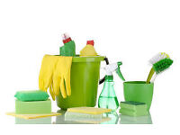 Cleaning Services For All Your Cleaning Needs