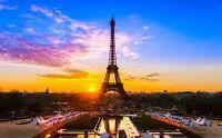 French Tutor/Teacher Available!
