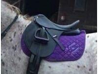 "Wintec 15"" Saddle"