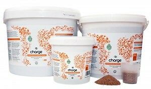 Ecothrive Charfe Insect Frass