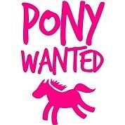 WANTED! Been there done that QUIET PONY payment plan Kurri Kurri Cessnock Area Preview