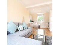 A newly refurbished 2 double bedroom flat within a Victorian conversion close to Upper Street
