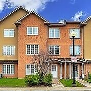 Very Bright And Clean 4 Bedroom Townhome!!