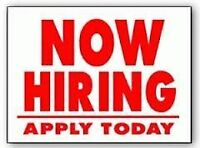 Looking to Gain Experience and Make a Good Income