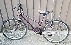 raleigh nexos ladies bike