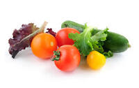 Do you want organically grown fresh vegetables ??