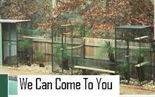*FREE measure and design service *CUSTOM MADE PET ENCLOSURES Macedon Ranges Preview
