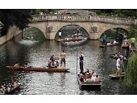 PUNTIN AND PICNIC IN CAMBRIDGE THIS SATURDAY