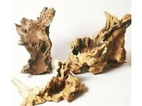After bogwood or driftwood nice pieces