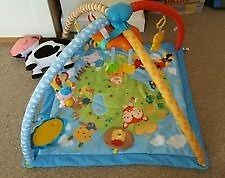 Immaculate Vtech Baby Gym