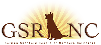 German Shepherd Rescue of Northern California