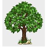 ozarkforest
