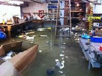 INSTALLATION, REPAIR, DIAGNOSIS, SERVICE & DESIGN OF SUMP PUMPS