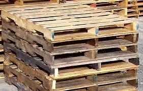 Assorted Wood Pallets and Skids
