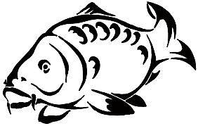 rolands-meeresfisch24