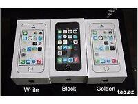 IPHONE 5S 16GB/32GB/64GB UNLOCKED BRAND NEW BOXED APPLE WARRANTY