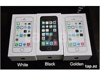 IPHONE 5S UNLOCKED BRAND NEW BOXED COME WITH APPLE WARRANTY 01274921308