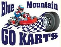 Go-Kart and Mini-Golf Package in Collingwood for 2 People
