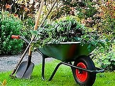 All Gardening & Handyman services