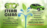 AUTO DETAILING ECO CLEAN WITH STEAM (Interior and /or Exterior)